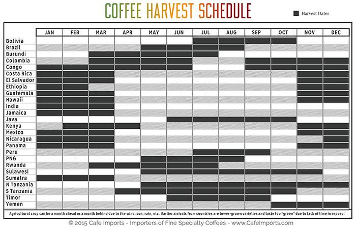 Coffee Harvest Shedule