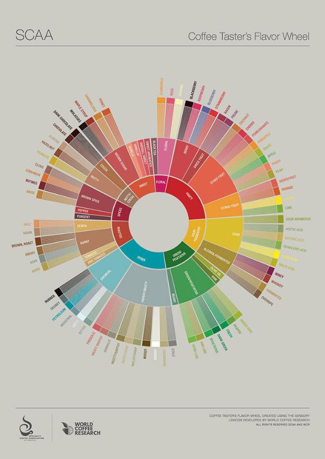 New SCAA Flavor Wheel